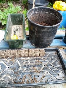 pluggen maken met potgrond